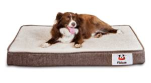 fidoze dog bed